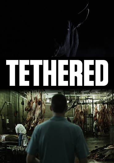 Poster Tethered Banner2